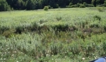 Lot 14 Lorwood Subdivision , Whitewater, Wisconsin<br />United States
