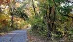 929 Scrubgrass , Danville, Kentucky<br />United States